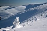 Vacation travel - Carpathian Mountains Winter, picture #425