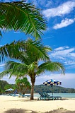 Vacation travel - Mauritius Island, picture #129
