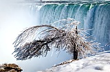 Vacation travel - Niagara Falls tours, picture #170