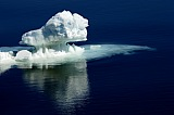 Vacation travel - Pure Antarctic ice, picture #242