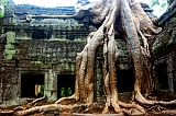 Vacation travel - Temple ruins - Angkor wat, picture #184