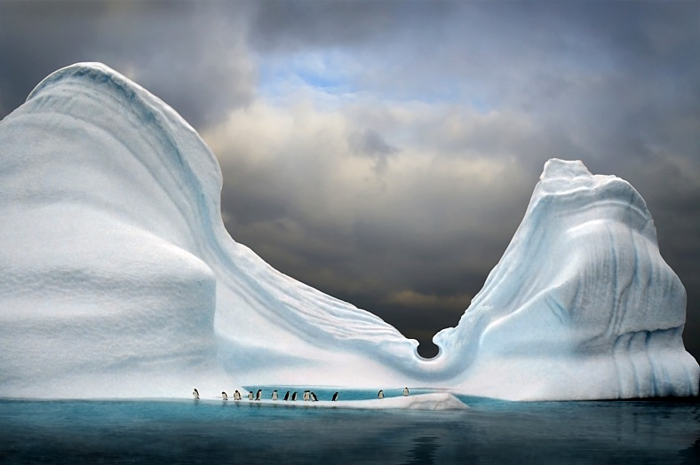 Antarctica travel. Iceberg with penguins looks like swimming pool. Antarctic tourism.
