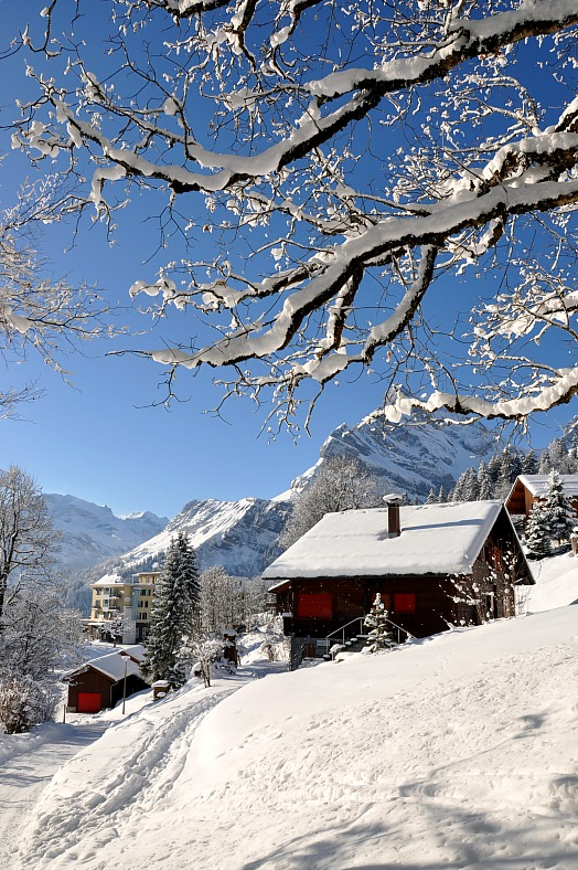 Ski holidays - famous Swiss skiing resort Braunwald. Switzerland tours.