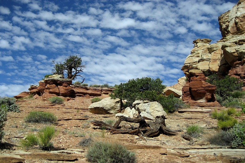 Capitol Reef Park, USA - vacation travel photos