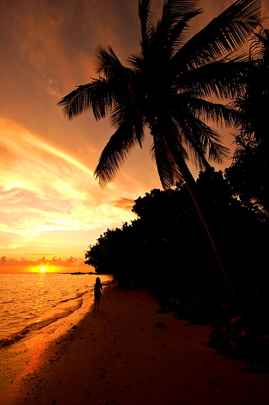 Fiji resorts. Sunset on Malola Island, Fiji. Palm tree and beach with a woman walking in to the sunset. Fiji holidays - vacation travel photos