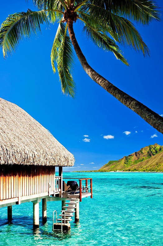 Tahiti resorts. Bungalow and palm with steps to amazing blue lagoon at Bora Bora resort, French Polynesia. Tahiti all inclusive vacations - vacation travel photos