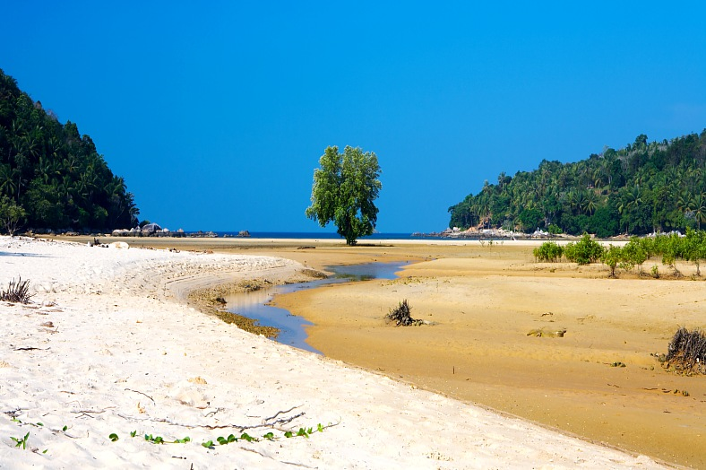 Tropical Beach Low Tide - vacation travel photos