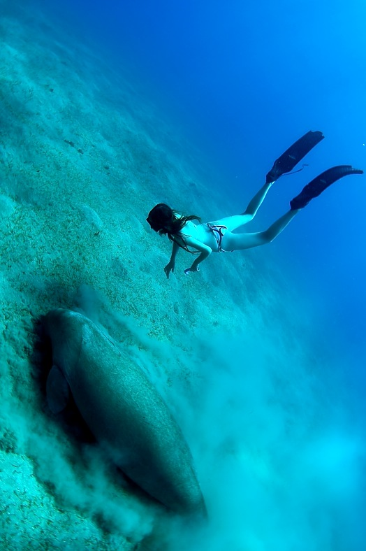 West Africa Diving