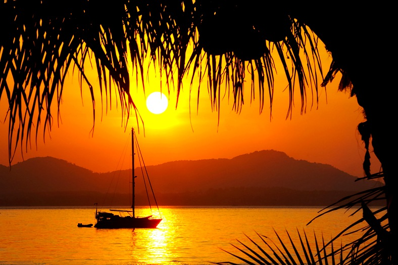 Tropical vacations. View from under the coconut palm on nice yacht sliding slowly along the shore during sunset. Caribbean vacations